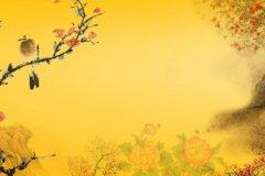 古典中国风名字诗意网名