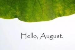 八月你好的文艺唯美句子